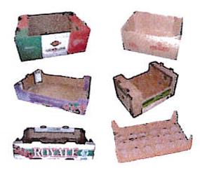 cartons